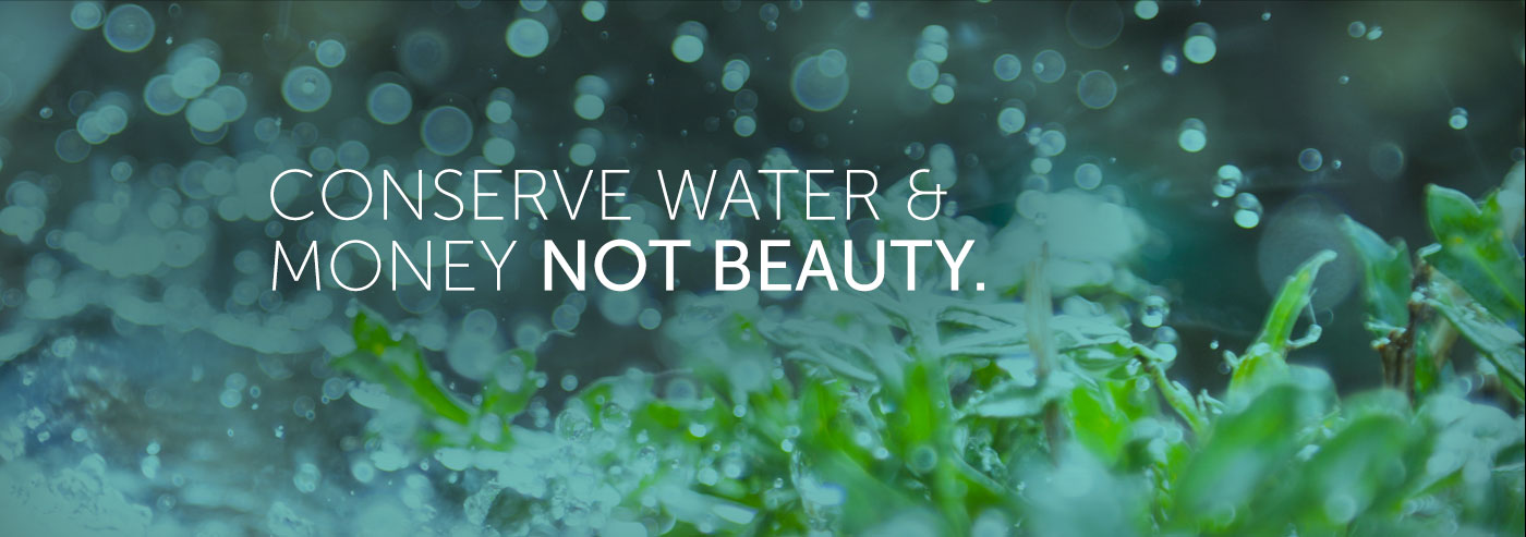 Conserve Water & Money Not Beauty